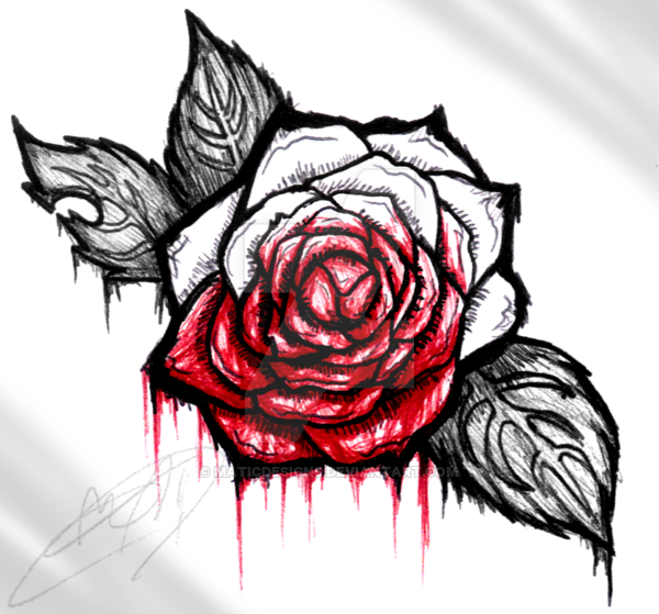 Drawn rose blood dripping Rose MATicDesignS Rose  by