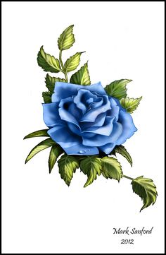 Drawn rose detailed Rose TattoosPicture closest in and