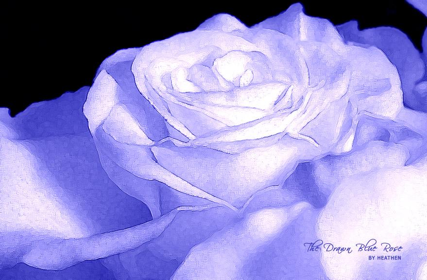 Drawn rose blue rose Light art rose art light