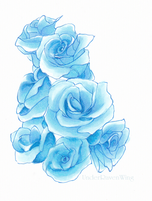 Drawn rose blue rose By Dhavita Dhavita on DeviantArt