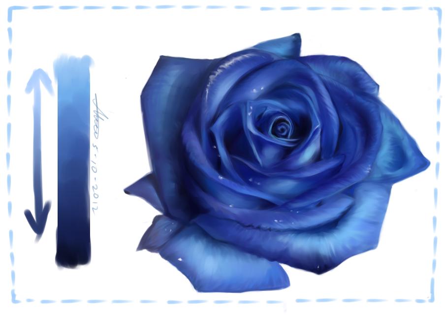 Drawn rose blue rose Net/fs71/f/201… are DeviantArt xXCloakedDarknessXx Roses