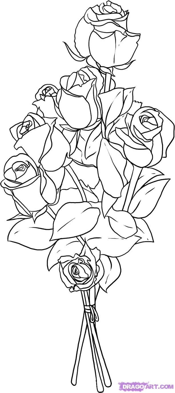 Drawn rose bunch rose Flowers Step roses Online 7