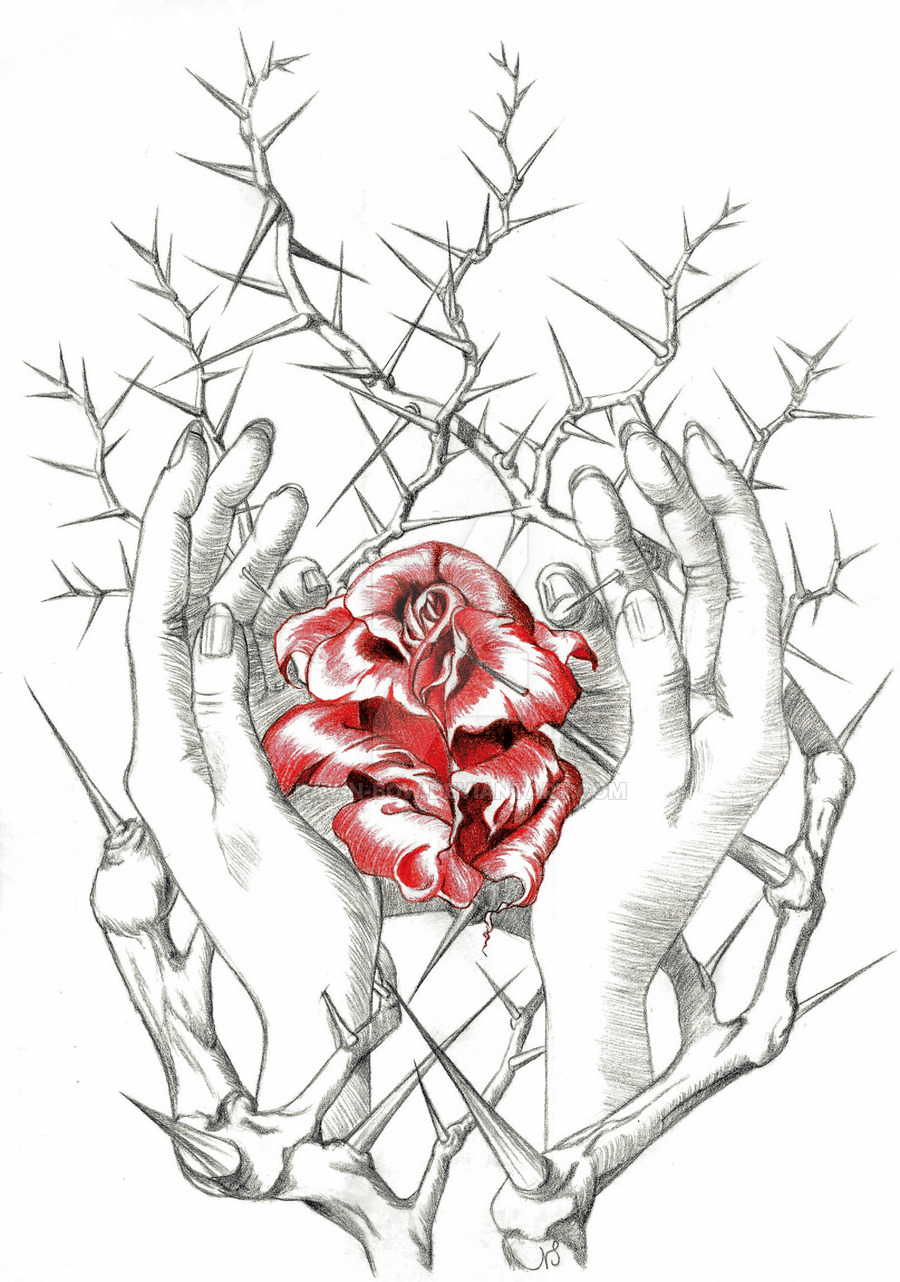 Drawn rose bush RAY hands by  hands