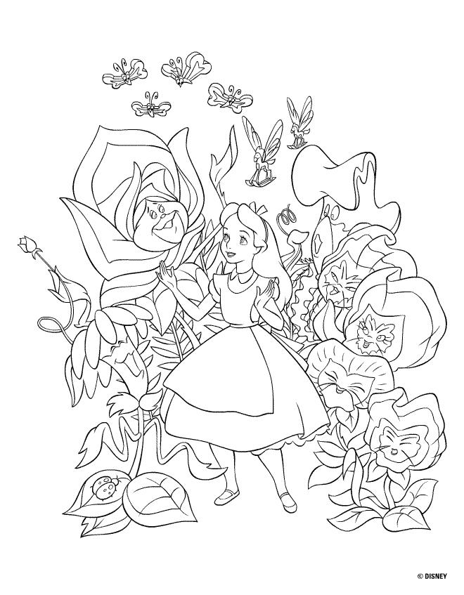 Drawn rose bush alice in wonderland card Disney rose talking bushes girl