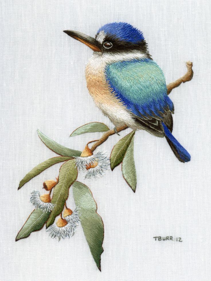 Drawn rose bush australian bird Images Find more Pin BIRDS