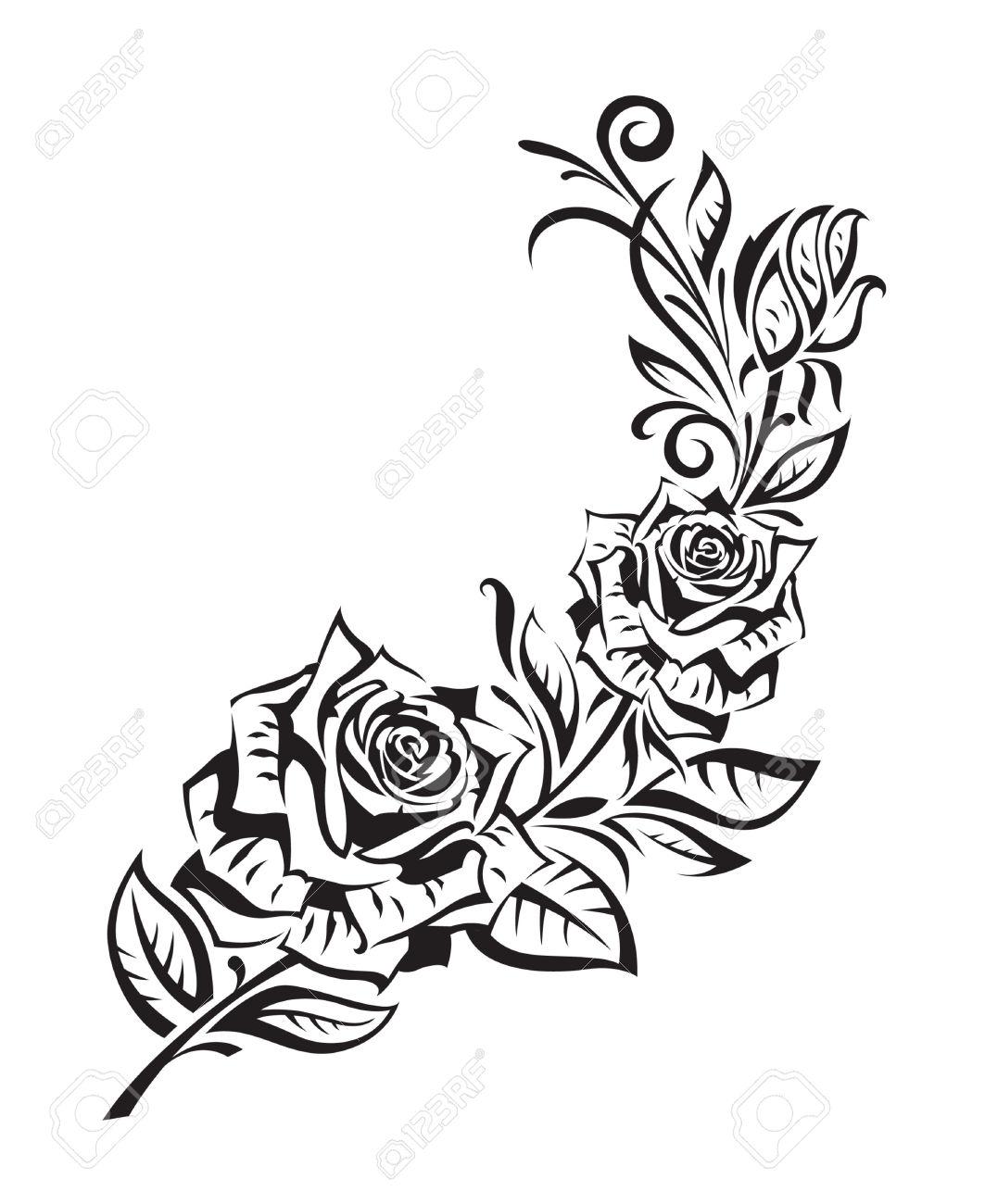 Drawn rose bush black gray rose Vector 25657895  on rose