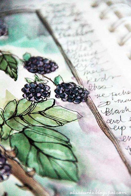 Drawn rose bush blackberry Tattoo Vintage journal Pinterest Blackberry