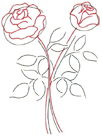 Drawn rose bush rose petal Techniques de add When drawing