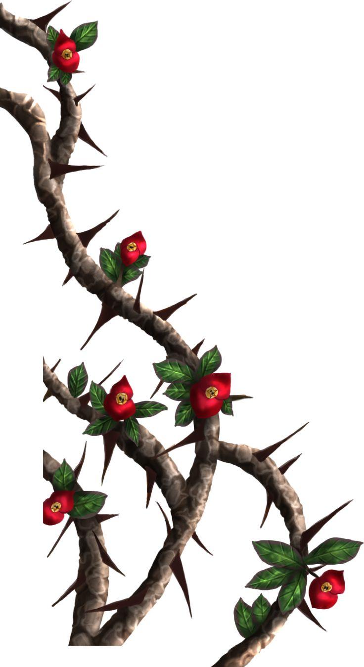 Drawn rose bush rose vine Painted Crown Crown on vines