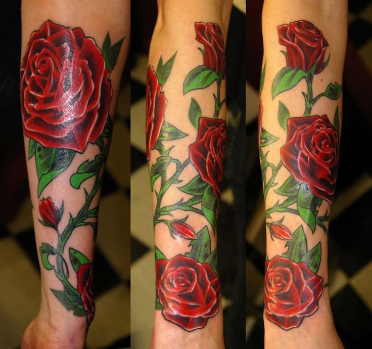 Drawn rose bush rose vine On Rose pattern 25+ stitch