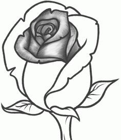 Drawn rose bush rosebud Flowers image Step Embroidery to