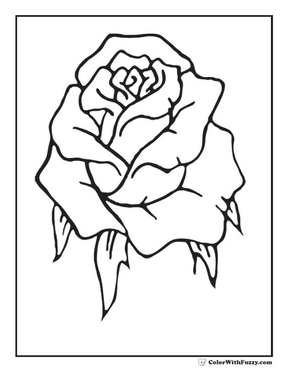 Drawn rose bush rosebud Printables PDF Bud Rose Coloring