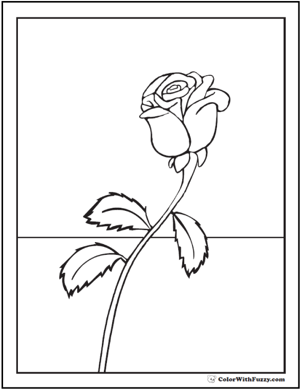Drawn rose bush single rose Coloring Printables 73+ Single To