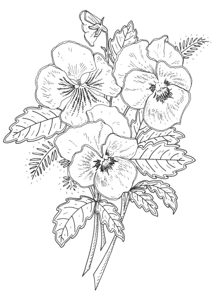 Drawn rose bush stamp Stamp Pansy emilywallis New for