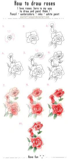 Drawn rose bush step by step flower Com roses to rose on