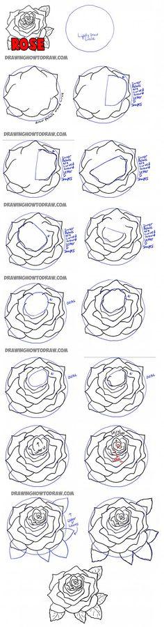 Drawn rose bush step by step flower Draw step Style tattoo to