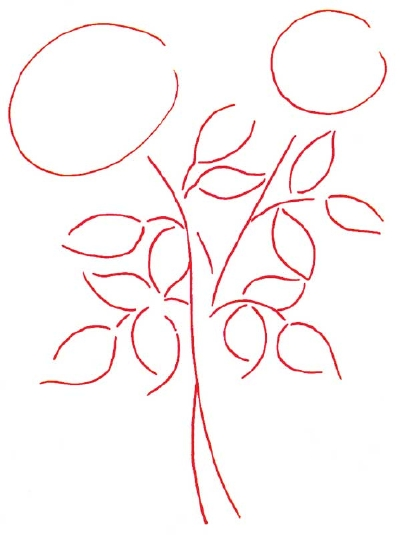 Drawn rose bush step by step flower Outline Rose a to a
