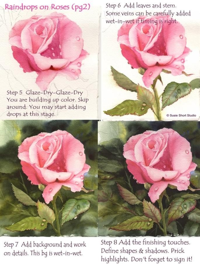 Drawn rose bush wet Painting (Instruction Roses Painting in