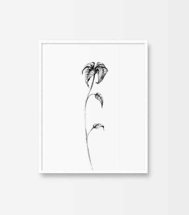 Drawn rose bush wilted flower Print Flower Black Printable Leaves