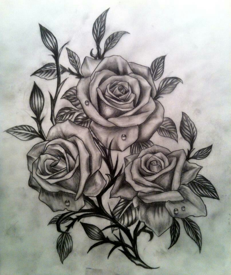 Drawn rose bush woman Pink Best Pinterest (in with