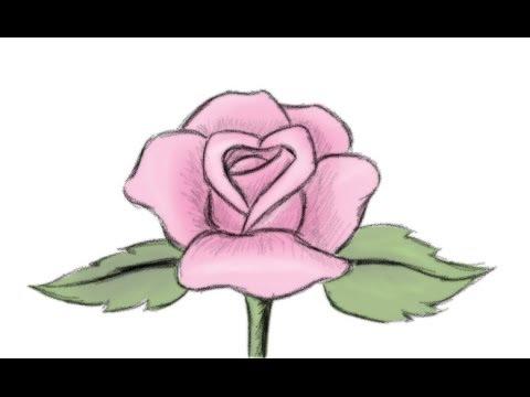 Drawn rose cartoon Rose to How Flower Draw