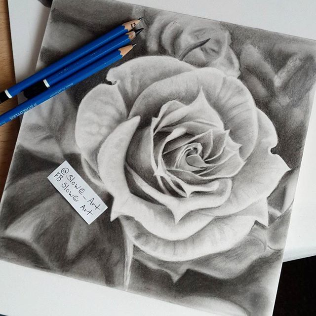 Drawn rose charcoal drawing Drew almost draw the year