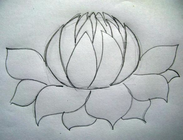 Drawn rose closed To How Draw How flower