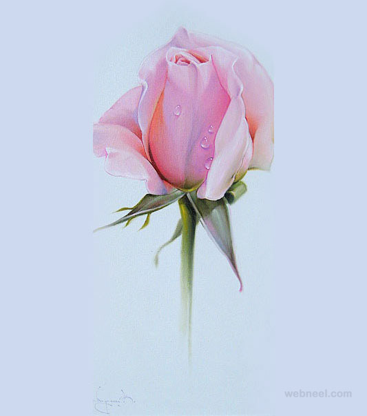 Drawn rose colored pencil Drawing drawing color pencil Paintings