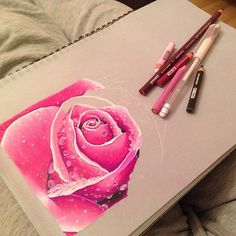 Drawn rose colorful flower From Beautiful @carleeannabella the top