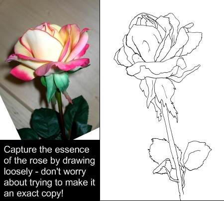 Drawn rose contour drawing Drawings How to Draw Rose