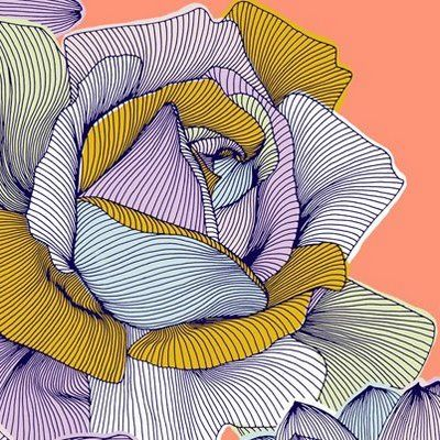 Drawn rose contour drawing 65 the Pin more on