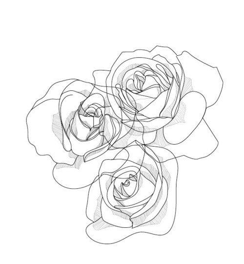 Drawn rose contour drawing Pinterest #roses 25+ Flower line