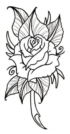 Drawn rose creative More Rosas your Symbolize best