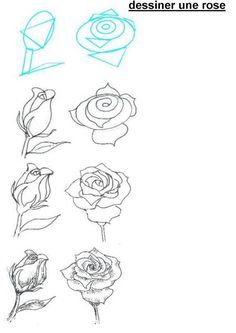 Drawn rose detail drawing By how a to draw