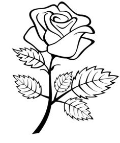 Drawn rose bush artistic Best Coloring pictures Flowers