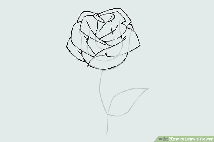 Drawn rose different flower To Image 9 Easy a