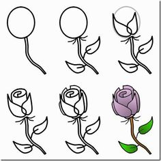 Drawn rose different flower For Find Flowers Wonderful and