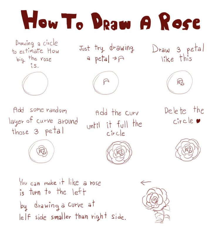 Drawn rose draw a Rose Roses by deviantART best