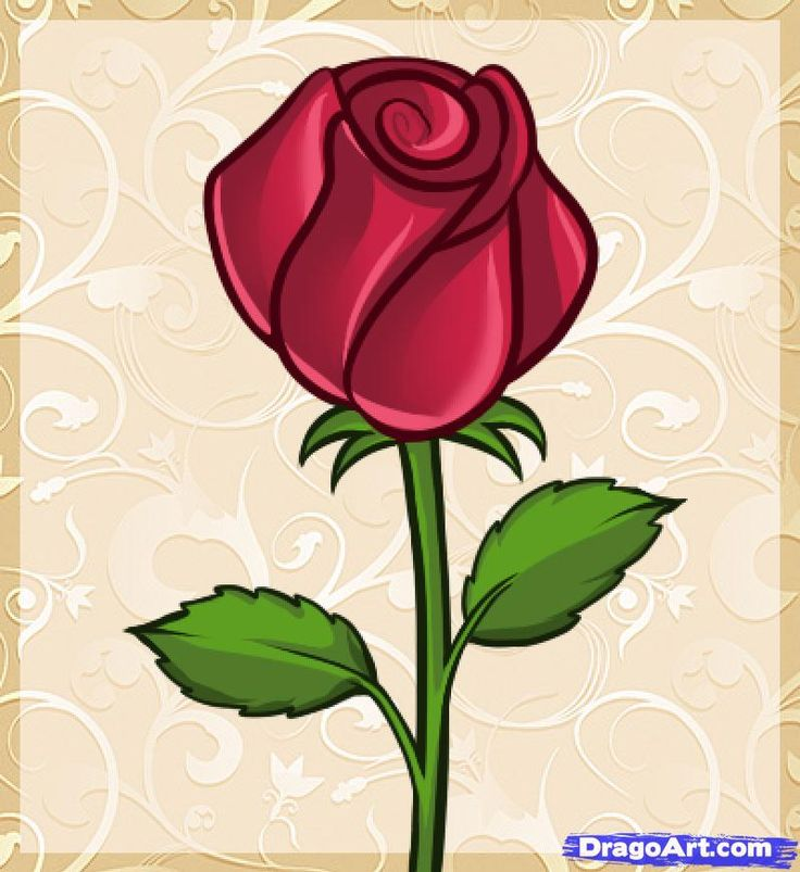 Drawn rose draw a This rose on draw ideas