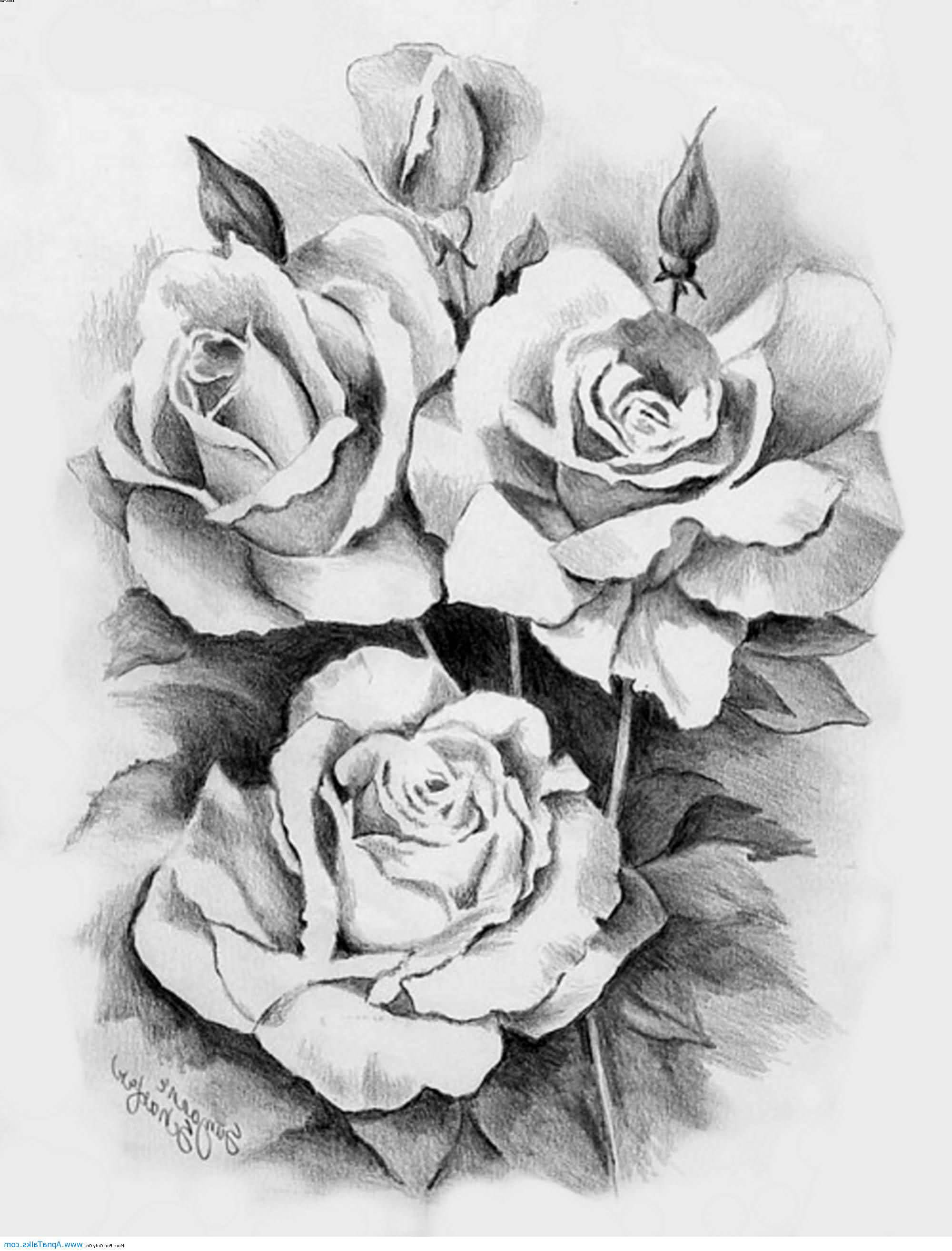 Drawn rose draw a Beautiful Ideas 25 inspiration Drawings