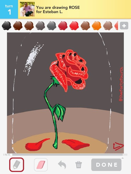 Drawn rose draw something See to More  in