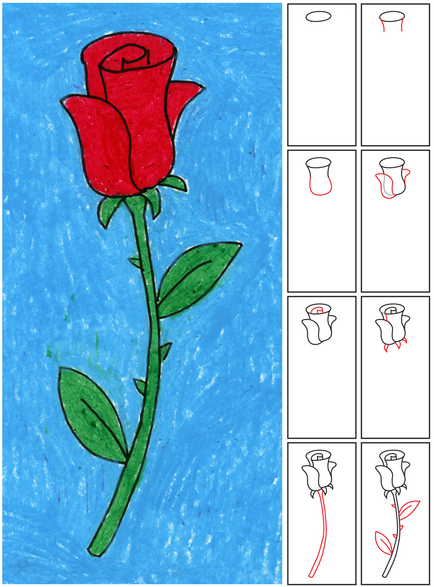 Drawn rose drowing A Draw Rose a Draw