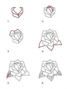 Drawn rose drowing Tattoo Style a Rose How