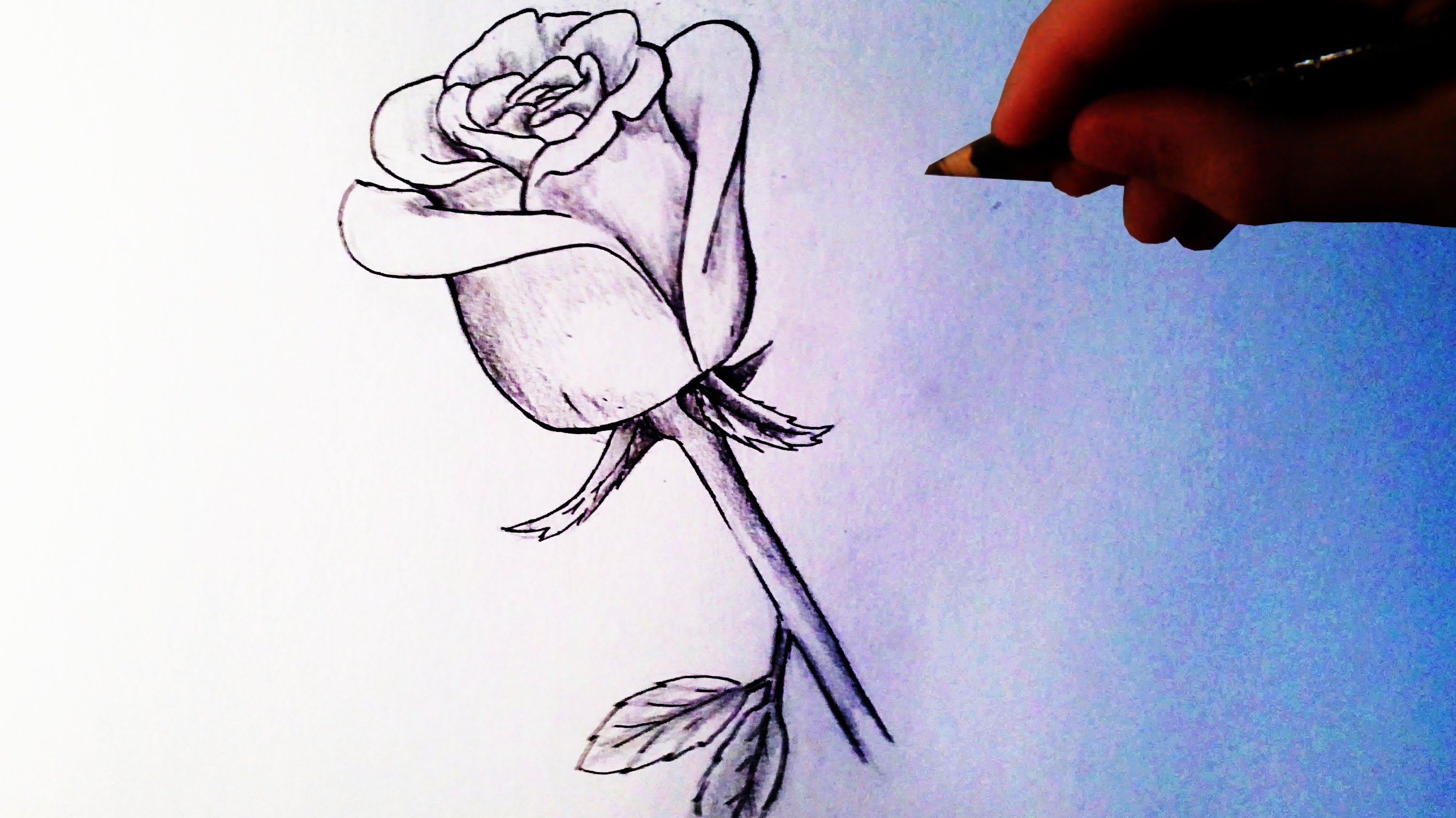 Drawn rose easy Draw a Easy Rose YouTube