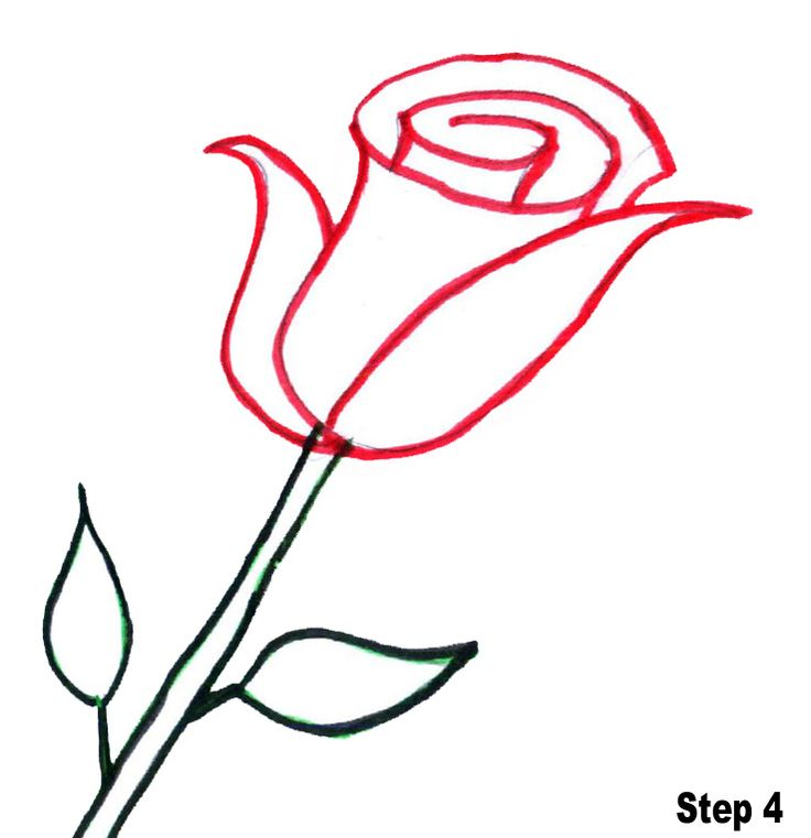 Rose clipart easy #3