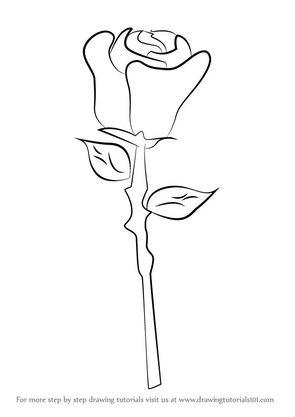 Drawn rose easy Step a Rose Rose Easy