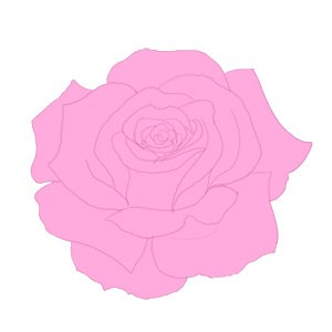 Drawn rose fancy Step rose a how How