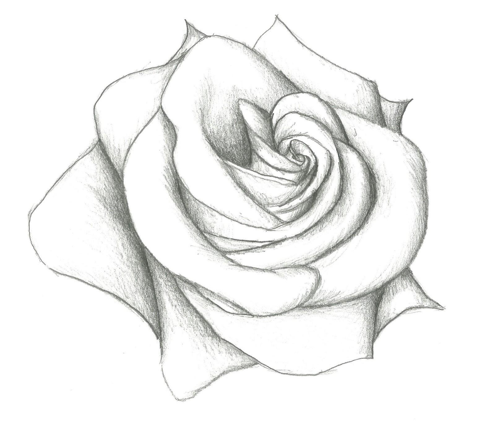 Drawn hearts big rose Hearts 12 Easy Model Pencil