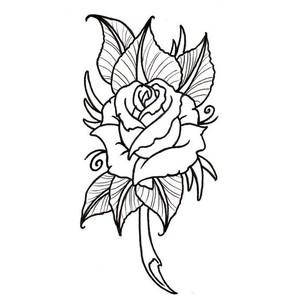Drawn rose full A Img jpg outjpgsizeltid31128712 Rose