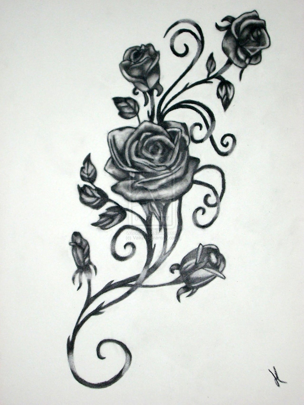 Drawn rose gothic Pattern Designs Vine Rose Vine